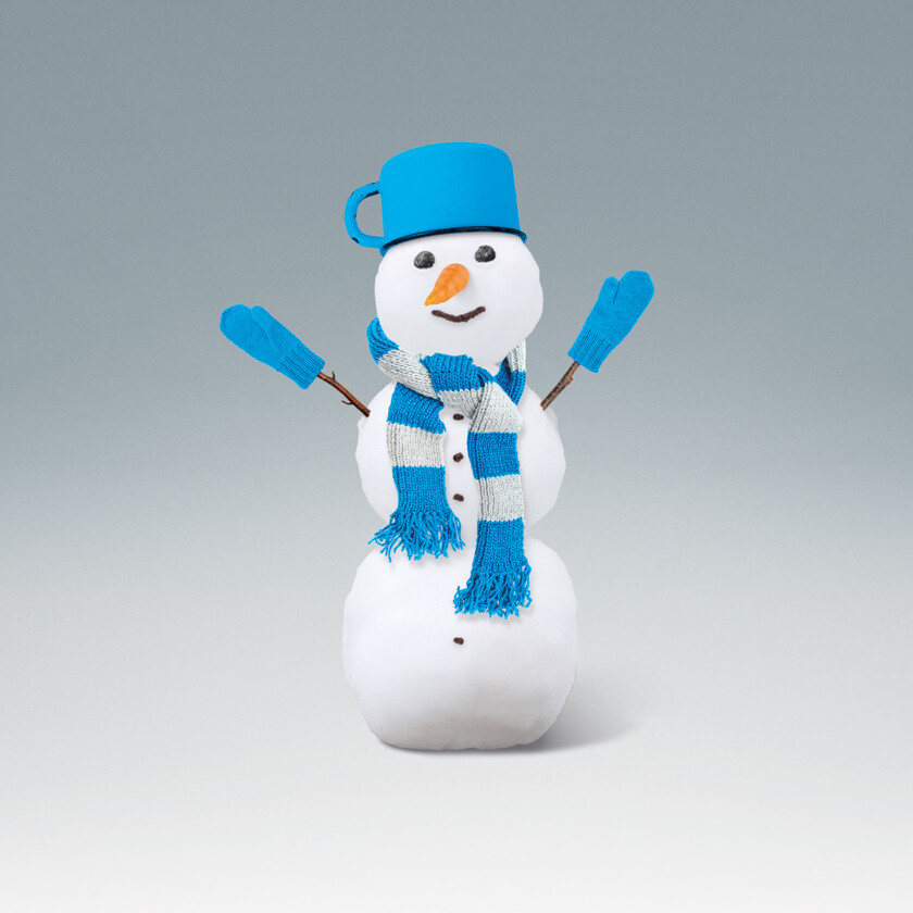 Sněhulák & Svetr